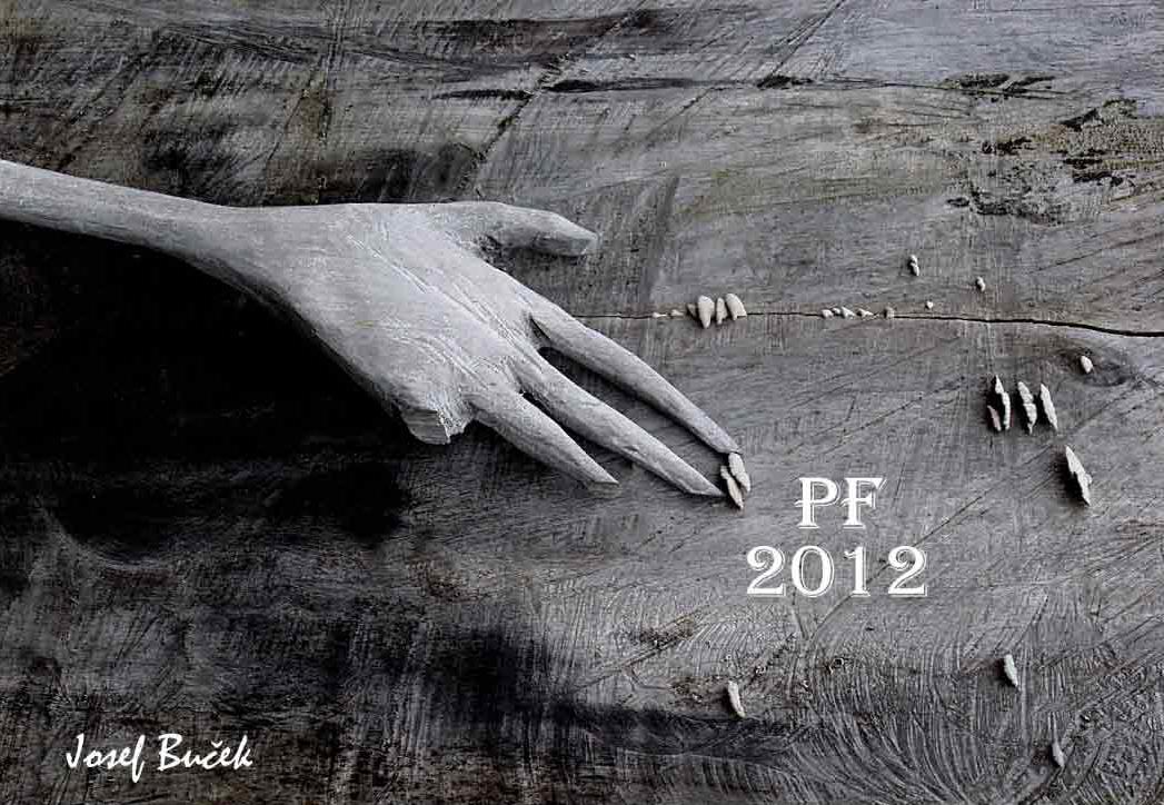 """Fotorevue 221 – """"Pour féliciter 2012 – pro štěstí"""""""
