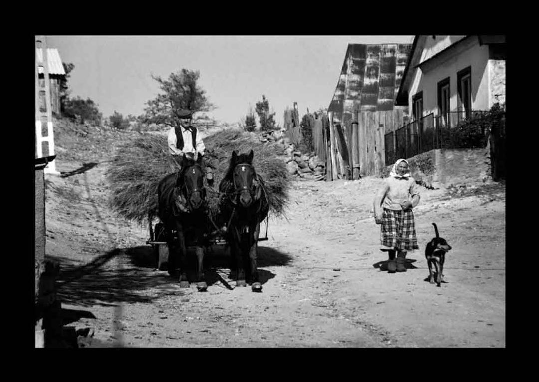 """Fotorevue 197 – Petr Moško """"Deset let v Banátu"""""""