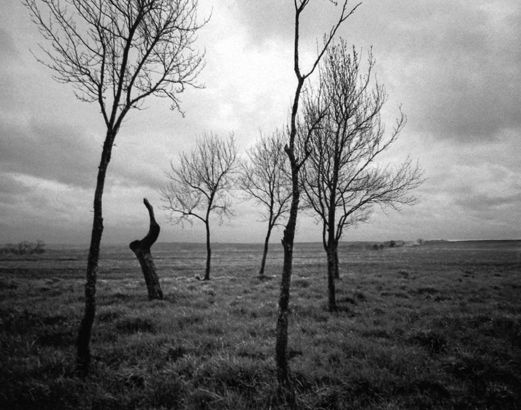"""Fotorevue 144 – Jacqueline Salmon  """"Rimbaud Parti"""""""