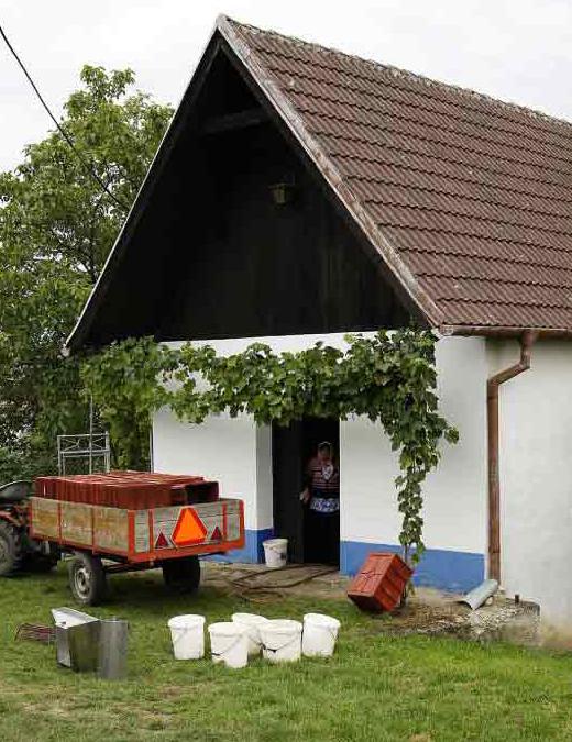 """Fotorevue 306 – """"Sklepy a sklípky vinařů na Slovácku"""""""