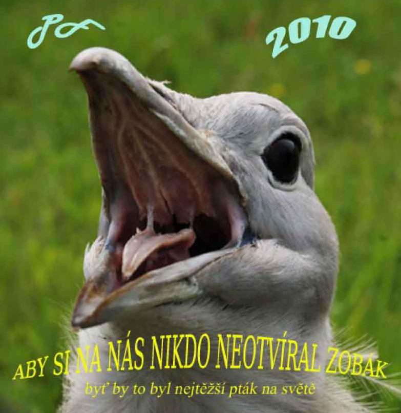 """Fotorevue 165 – """"Pour féliciter 2010 – pro štěstí"""""""